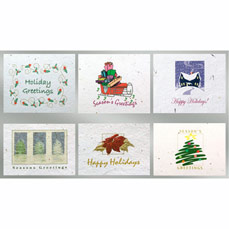 Floral Seed Paper Holiday Six Pack Cards - Christmas 6 Pack