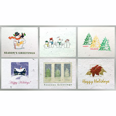 Floral Seed Paper Holiday Six Pack Cards - Plain 6 Pack