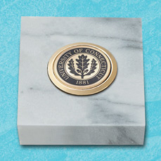 White Marble Paperweight with medallion