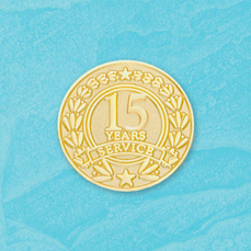 15 Year Stock Service Pin